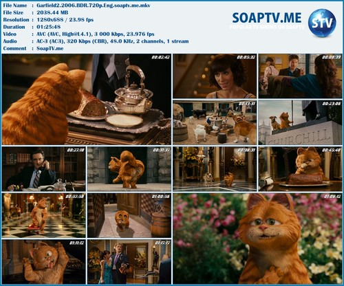 Garfield 2 A Tail Of Two Kitties Download Free Series Hd 720p Soap Tv Me